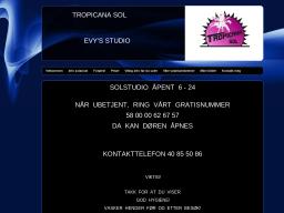 www.evys.info